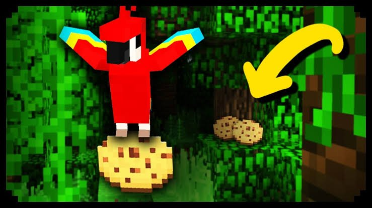 What do Parrots eat in Minecraft